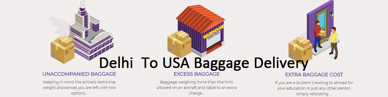 Excess Baggage Delivery Services Unaccompanied Luggage From Delhi To USA, baggage courier to usa, excess baggage to usa charges from delhi
