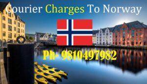 Courier Charges For Fredrikstad From Delhi