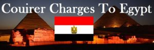 Courier Charges To Egypt From Delhi