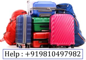 Excess Baggage/Luggage Courier Services